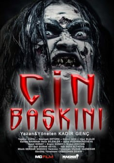 CİN BASKINI